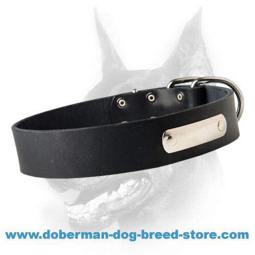Specialized Leather Doberman Collar with ID Tag
