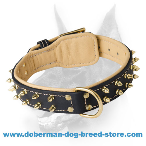 Simply Stunning Leather Dog Collar with 2 Rows of Spikes for Doberman