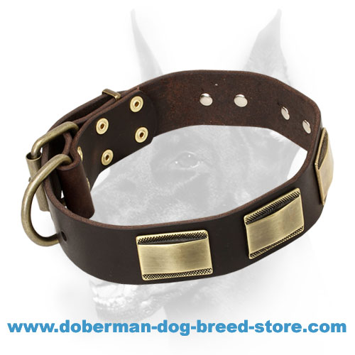Massive Decoration Doberman Dog Leather Collar