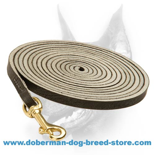 New Tracking Dog Leash for Doberman's Professional Engagement