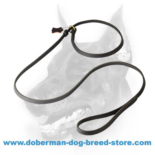 Doberman Dog Leather Leash and Collar in One