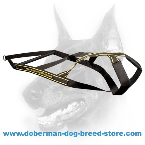 Weight Pulling Triple Stitched Nylon Harness for Doberman