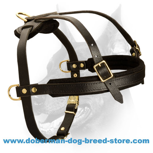 Multifunctional Leather Dog Harness For Doberman Pincher