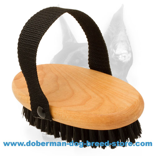 Doberman Dog Professional Bristle Brush for Grooming
