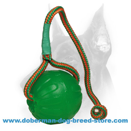 "Doberman Dog ""Roll and Throw"" Special Rubber Ball on a Rope"