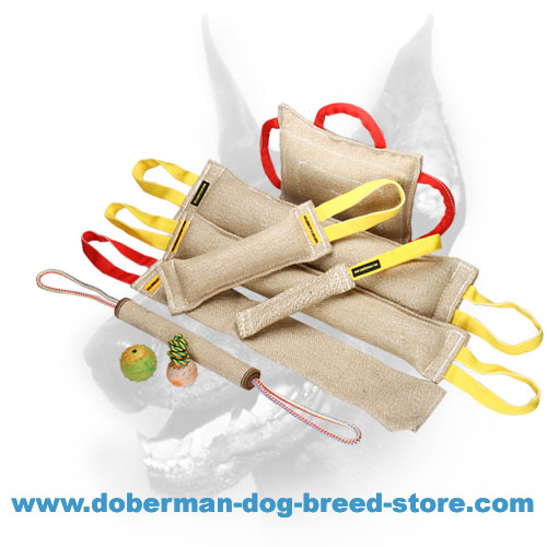 Excellent Doberman Dog Training Set of Jute Items and 3 Toys as a Gift