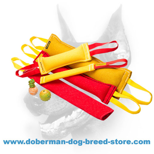 Doberman Dog Training Set of High-Quality Synthetics and 3 Toys as a Gift
