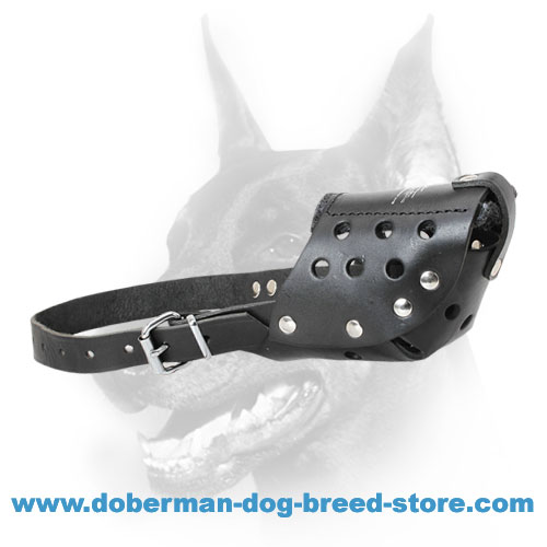 Doberman Dog Ultra Comfortable Walking Muzzle