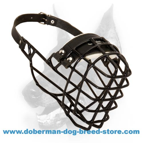 Doberman Wire Dog Muzzle for Winter with Rubber Cover