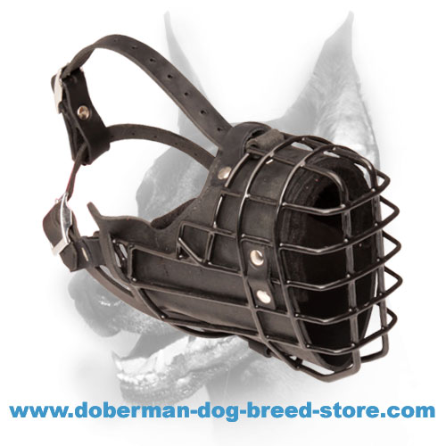 Winter Walking Wire Basket Dog Muzzle Padded All Over