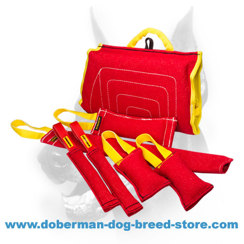 Doberman Puppy Training Set of 7 Items - French Linen Material