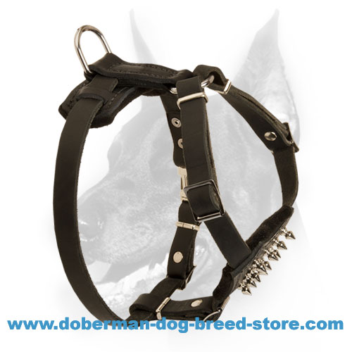 Doberman Puppy Genuine Leather Harness for Maximum Control