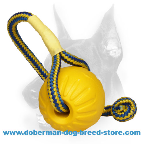 """Go get it"" Doberman Dog Foam Ball with Colorful Nylon Rope"