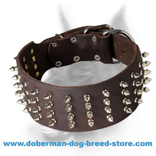 Doberman Dog Collar With Spikes Hand Set in 4 Rows