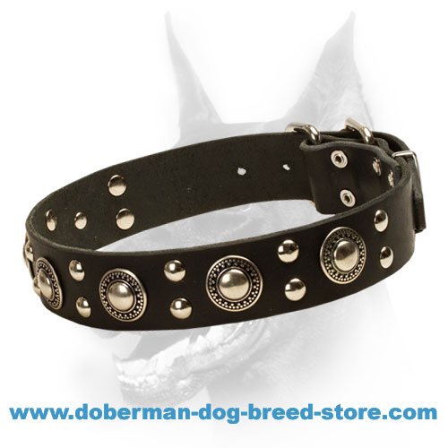 'Rock n Roll' Doberman Dog Collar with Metal Decoration