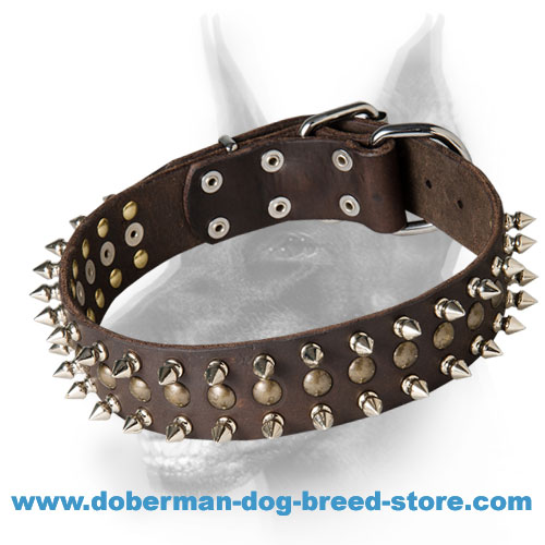 Stunning Doberman Dog Collar with Studs and Spikes