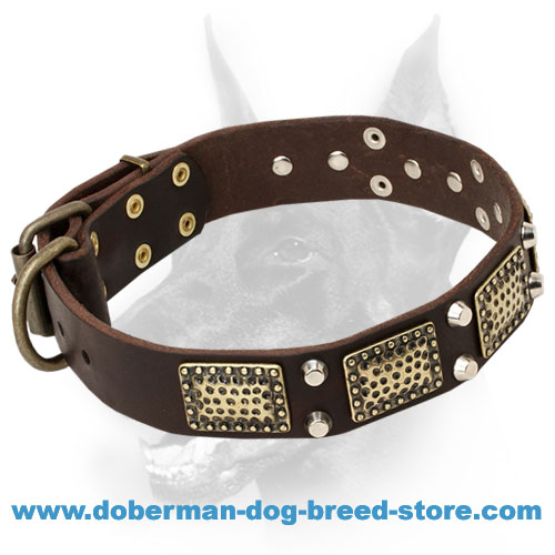 War Doberman Dog Leather Collar with Plates and Pyramids