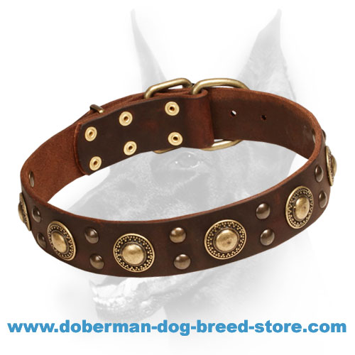 """Space-like"" Doberman Dog Collar with Outstanding Adornment"