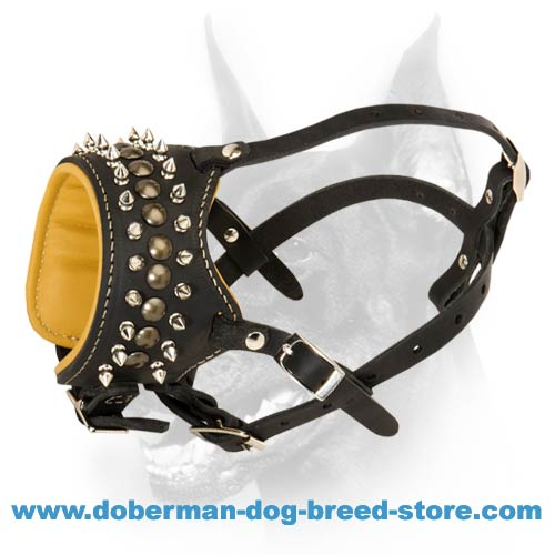 Royal spiked leather dog muzzle-Handcrafted stylish muzzle for Doberman - Click Image to Close