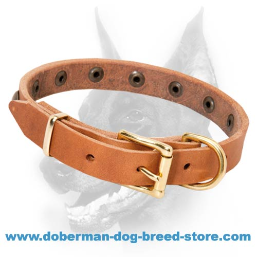 Simply Beautiful Leather Dog Collar with Brass Round Studs
