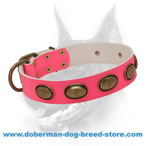 Pink Leather Dog Collar with Vintage Oval Brass Plates for Doberman-lady