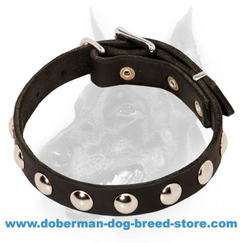 Elegant Leather Dog Collar with Round Nickel-Plated Studs