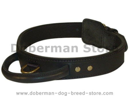Shopzilla - Gift shopping for Woof Wear Dog Collars