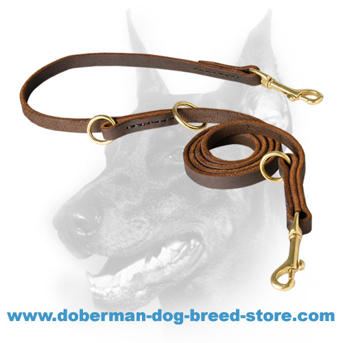 Leather Doberman Leash for Dog Ttraining, Walking, Tracking