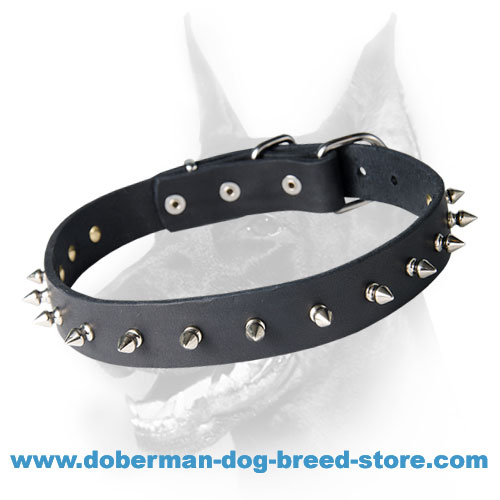 Leather Dog Collar with Row of Silverish Spikes