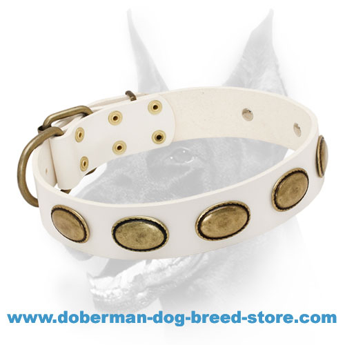White Leather Dog Collar with Antiqued Brass Ovals