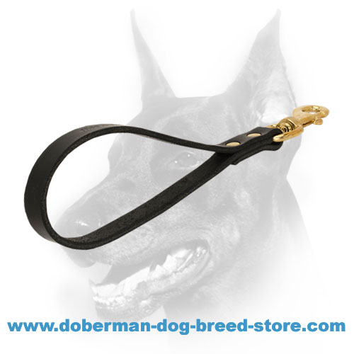 Short Leather Dog Leash with Brass Fittings