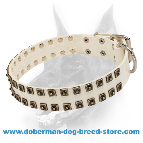 Studded White Leather Dog Collar for Doberman