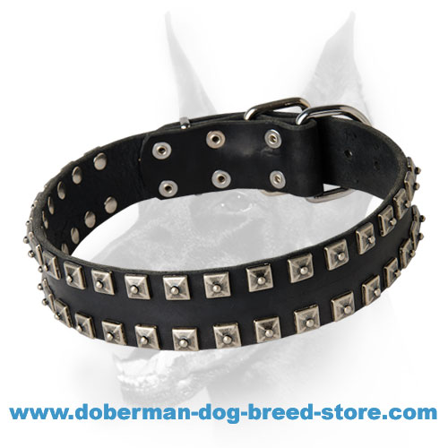Exclusive Stud Decorated Leather Dog Collar