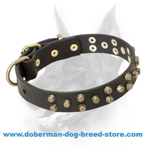 Extraordinary Leather Doberman Collar Decorated with Brass Cones