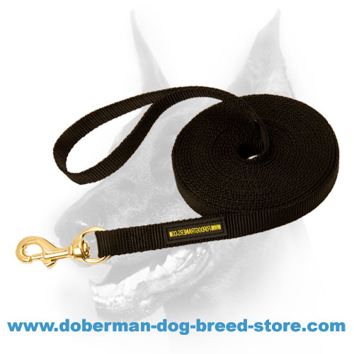 High quality Nylon dog leash with solid snap-hook