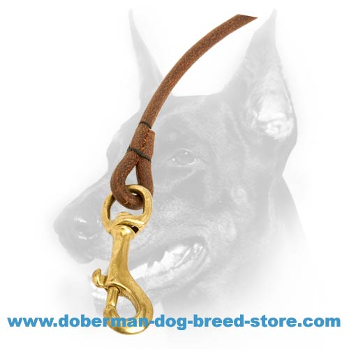 Snap-hook of doberman round leash