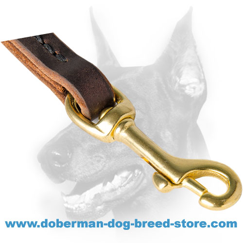 Short Doberman dog pull tab leash with brass snap-hook