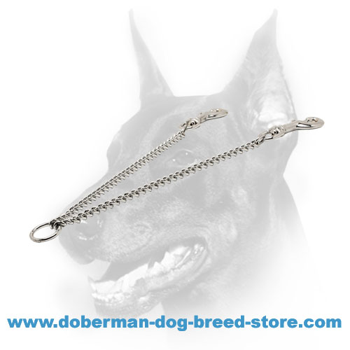 Doberman dog coupler with 2 durable snap hooks