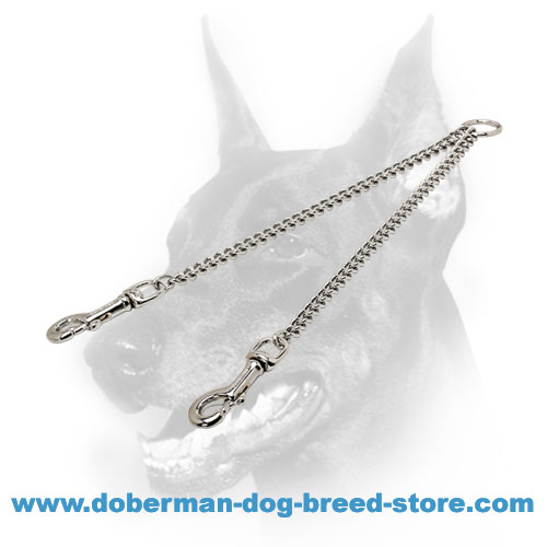 Doberman dog coupler with durable swivel snaps