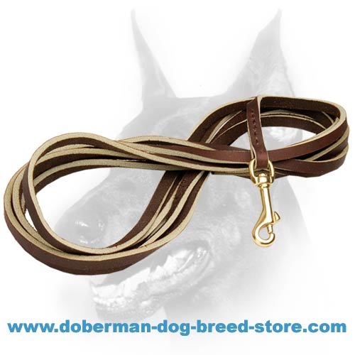 Super strong leather leash