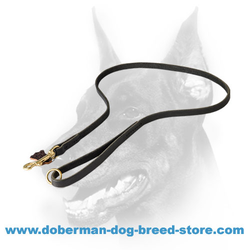 Doberman lead with heavy-duty brass snap hook