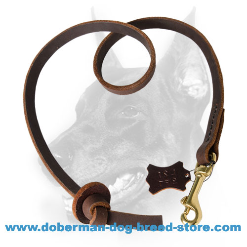 Doberman Dog short lead heavy-duty stitched