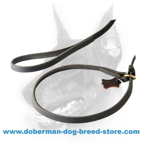 High-quality Leather leash for quick handling a Doberman