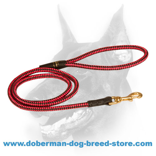Doberman dog Nylon Lead with heavy duty brass snap