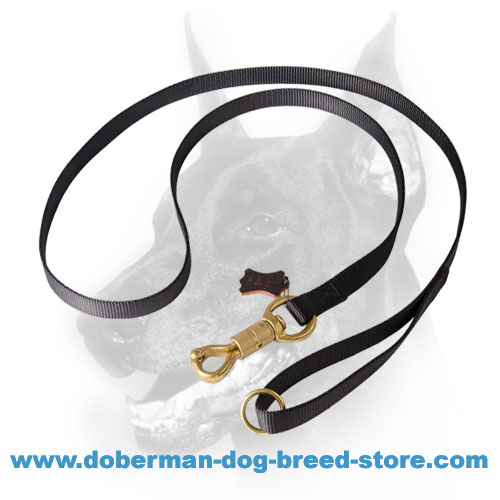 Doberman nylon leash securely stitched for durability