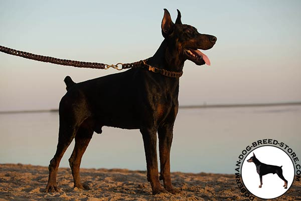 Doberman leather leash with rust-proof hardware for improved control