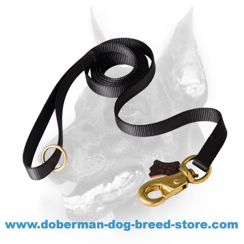 Doberman nylon leash stitched for increased durability