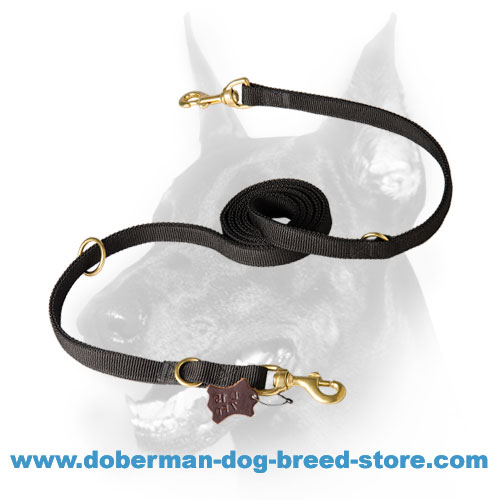 High-quality Nylon Doberman Leash for any-weather training
