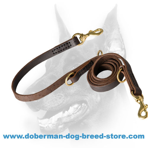 Multifunctional Doberman Leash Leather Perfecly Oiled