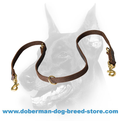 Unique Leather Dog Leash for Doberman